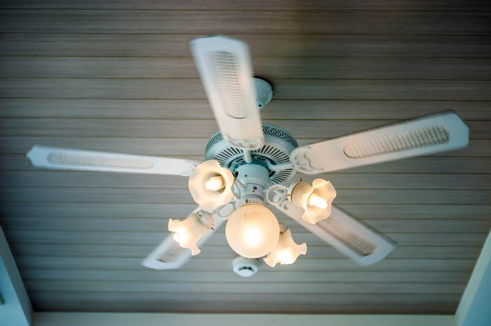How to choose a light bulb for your ceiling fan ceiling fan light fixture aloadofball Image collections