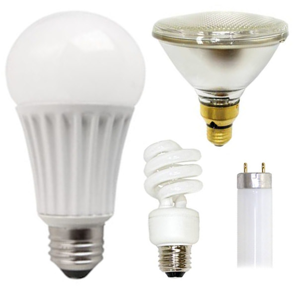 buy light bulbs at