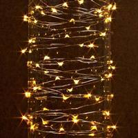 Gerson 60 Light 20 Silver Wire Warm White Battery Operated Outdoor Led Micro Miniature String
