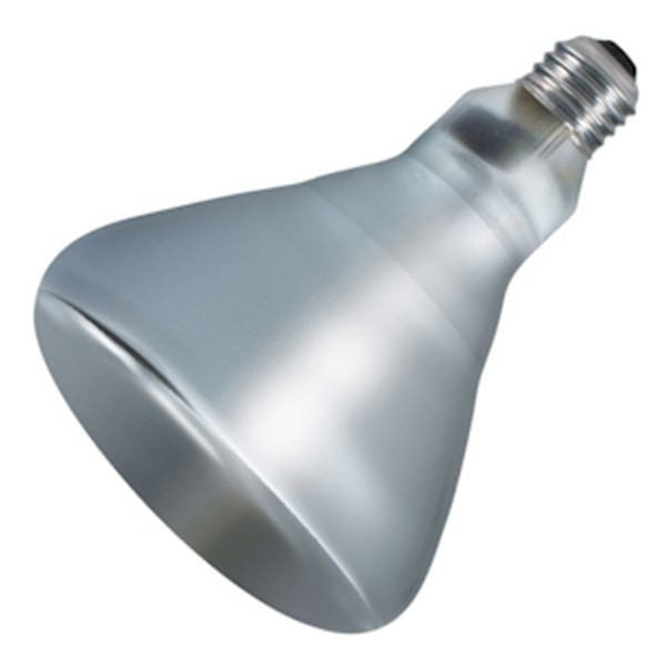Philips 202051 Heat Lamp