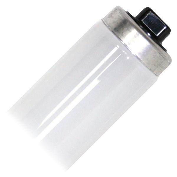 Philips 369785 straight t12 fluorescent tube 60 watt 48 t12 4100k cool white high output mozeypictures Choice Image